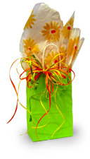 Kraft bag with printed cellophane