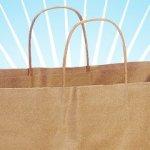 Ingenious Kraft Bags