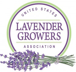 Lavender Growers Associ