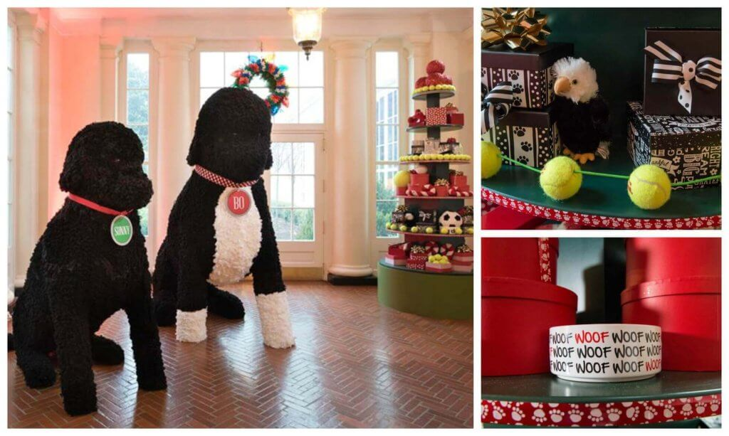 White House Christmas Dogs Bo Sunny