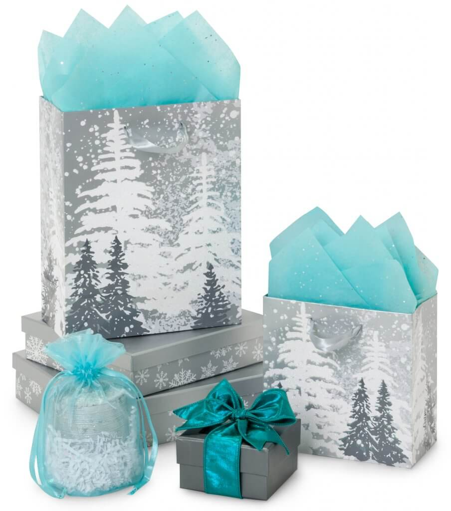 Frosted Forest Collection styled with Aqua accents